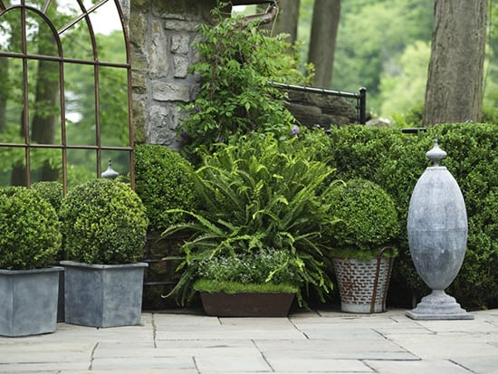 What Makes A Beautiful Garden That Aligns With Your Lifestyle?